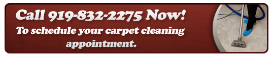 raleigh carpet cleaning by Ace Rug 919-832-2275