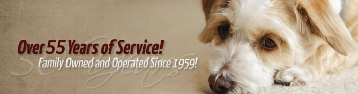 ace rug - pet safe carpet cleaning